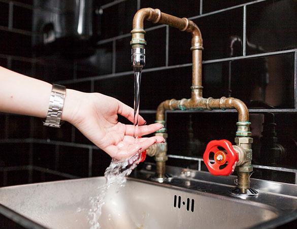 Boscosoft - Hygiene Audit